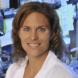 Sheila Stewart, PhD