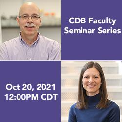 Drs. Steve Adam and Danijela Maric